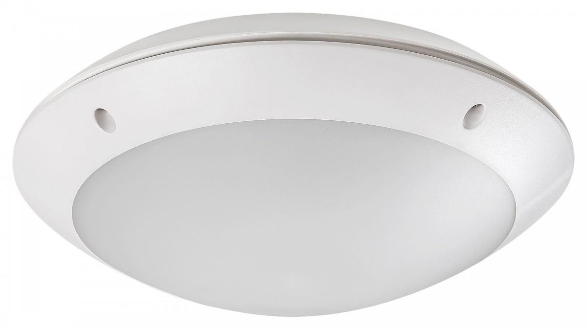 Rabalux 98008555 LED venkovní stropní svítidlo s pohybovým čidlem Lentil 1x12w|4000K|IP54